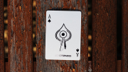 Casual Playing Cards by Paul Robaia