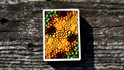 Kameleon (Yellow) Playing Cards