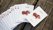 World Tour: Mongolian Playing Cards