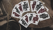 Sensory Playing Cards (Dark) by TCC