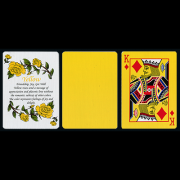 Tally Ho Reverse Fan back (Yellow) Limited Ed. by  Aloy Studios / USPCC